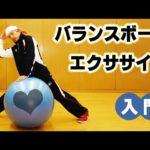 ダンサーYU-SUKEのダイエット動画