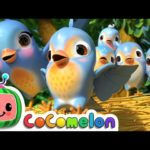 Cocomelon – Nursery Rhymes
